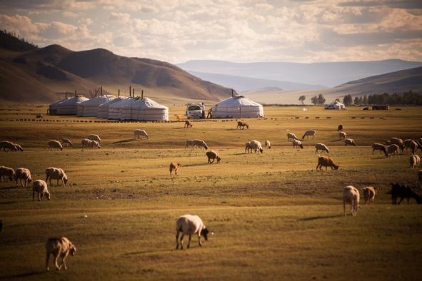 Voyage clients Mongolie